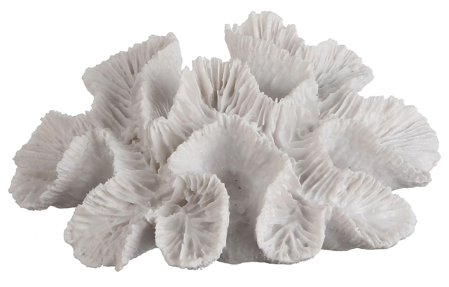De Décoration Corail Cm Blanc 16 RcL53A4jq